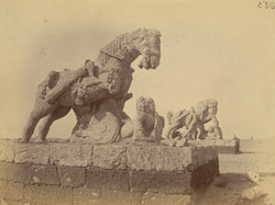 Statues of two horses near the ashvadavara, Surya Temple or Black Pagoda, Konarka